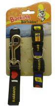 Barbados leash and dog collar set