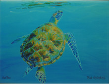 A tile with a painting of a turtle surfacing by Sue Trew