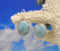 Larimar and silver oval drop earrings.