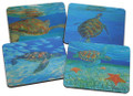 Set of 4 different coasters featuring paintings by Sue Trew.