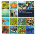 Barbados - A Coral Paradise
