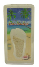 A magnet with an image of a beach in Barbados with a conch shell and some Barbados sand.