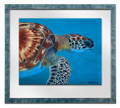 Hawksbill Turtle Head by Sue Trew