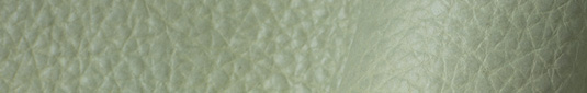 Dragonfly sage green colored buffalo leather hides and sides