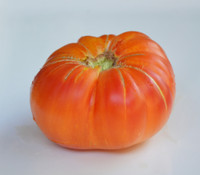 Peppermint Tomato