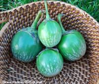 Kermit Eggplant