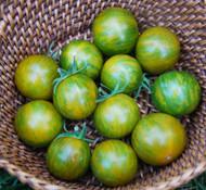 Orange Green Zebra Tomato