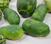 Kleckly's Sweet Watermelon