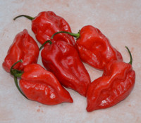 Fatalii Red Pepper