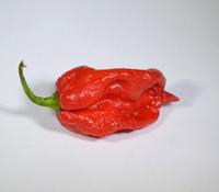 Raja Mirchi Pepper