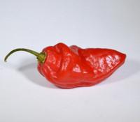 Mako Kokoo Pepper