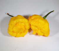 Yellow Scotch Brain Pepper