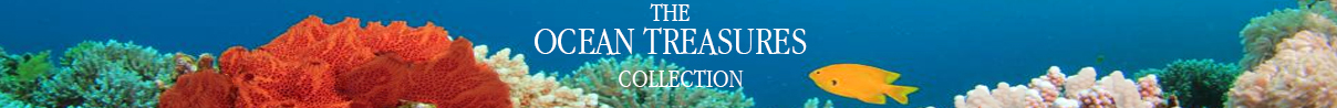 1-the-ocean-treasures-collection-from-artune-online-jewelry.jpg