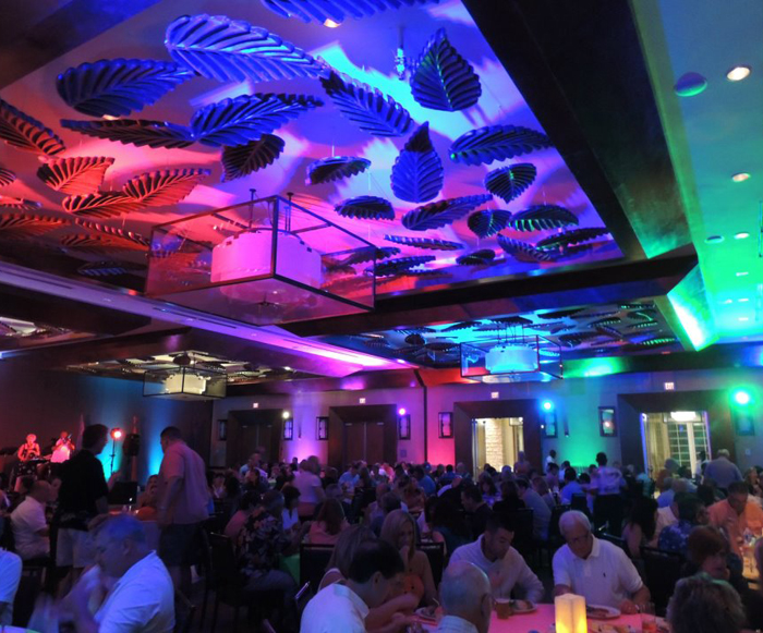 colorstrip-fx-left-led-lights-lightingeffects-disco-discolight-nightclubsupplies-nightclub-4-94158-66532.jpg
