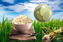 胚芽水晶米-整箱30磅