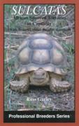 """Sulcatas - African Spurred Tortoises in Captivity"" Book"