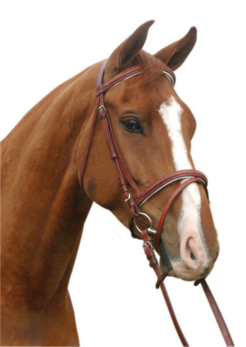 McAlister Padded Hanovarian Bridle
