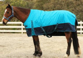 X-Calibur 600D Winter Synthetic Paddock Rug