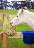 Miniature Pony Hay Net