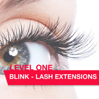 Blink Lash Extension Diploma Class