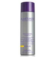 Amethyste Professional - Regulate Sebo Control Shampoo 250ml/1000ml