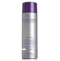 Amethyste Professional - Silver Blonde Toning Purple Shampoo 250ml/1000ml