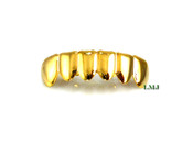 Universal Fit 14K Gold tone Bottom Grille (Clear-Coated)