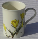 These slender coffee mugs remind you of the perfect breakfast coffee or tea with fresh fruit you enjoyed on your last vacation. Sternbergia design.