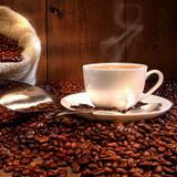 Amity Food and Coffee House