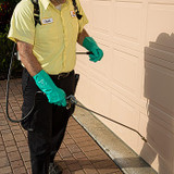 EcoLife Natural Pest Elimination-PERIMETER SPRAY & HOME PEST INSPECTION
