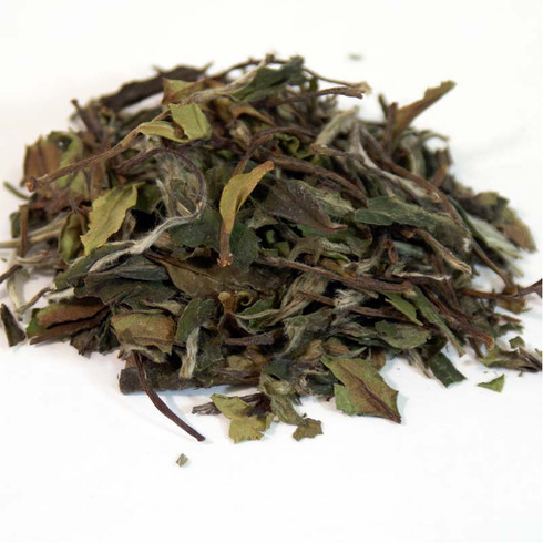 white tea pai mu tan