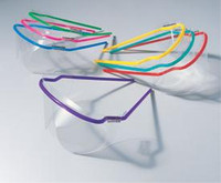 SafeView Safety Glasses