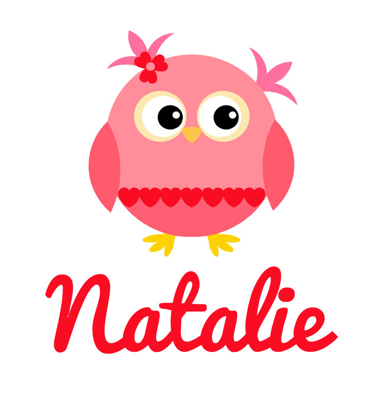 Girl's Name Pink & Red Heart Owl Baby Bib | Personalised ...