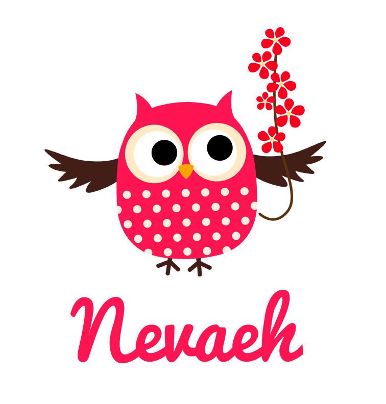 Girl S Name Pink Flower Owl Baby Bib Personalised