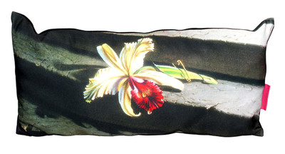 Tretchikoff Lost Orchid Cushion cover - 30 x 60cm