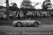 60911 - J. Ampt  Cooper Jaguar - Templestowe Hill Climb 25th September 1960 - Photographer Peter D Abbs