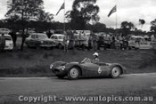 60915 - M. Cobb  MG Ausca - Templestowe Hill Climb 25th September 1960 - Photographer Peter D Abbs