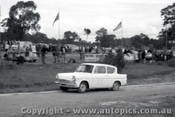 60920 - P. Coffey  Ford Anglia - Templestowe Hill Climb 25th September 1960 - Photographer Peter D Abbs