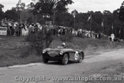 60921 - F. Hook  Austin Healey  - Templestowe Hill Climb 25th September 1960 - Photographer Peter D Abbs