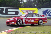 96022 - Skaife / Richards  Holden Commodore  - Sandown  1996 - Photographer Peter D Abbs