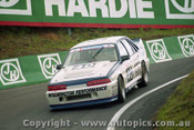 92739  - John Leeson / Rohan Cooke - Holden Commodore VL  -  Bathurst 1992 - Photographer Lance J Ruting
