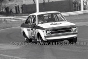 79073 - D. Earle / R. Steel, Ford Escort - Sandown Hang Ten 400 9th September 1979 - Photographer Darren House