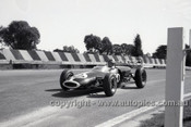 65553 - Wally Mitchel, Lotus - Sandown Tasman Series   21st February 1965  - Photographer Peter D'Abbs