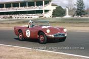 61407 - Ian Geoghegan - Daimler SP250 - Warwick Farm 1961 - Photographer Ian Thorn