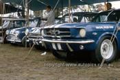 650470 -The Neptune Racing Team -  Norm Beechey, Ford Mustang, Jim McKeown, Cortina & Peter Manton Morris Cooper S  - 1965 - Photographer Bruce Wells