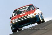 91766  -  J. Richards / M. Skaife  -  Bathurst 1991 - 1st Outright - Nissan GTR - Photographer Ray Simpson
