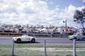 620082 - P. Owen / C. Wear, MGA 1500 & A. Rose / T. Sulman, Datsun Bluebird - Bathurst 12 hour 1962 - Photographer Bruce Wells