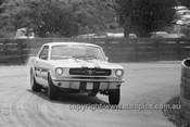 65111 - Ian Geoghegan, Ford Mustang  - Catalina Park Katoomba 1965- Photographer Bruce Wells