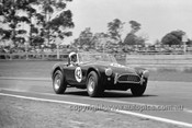 65484 - Ron Thorp, AC Cobra V8 - Warwick Farm 1965 - Photographer  Bruce Wells