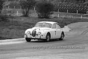 64113 - Bob Jane, Jaguar 1964 - Hume Weir 20th September 1964 - Photographer Bruce Wells